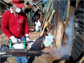 Galenos cubanos fumigan las casas e insisten en el uso de repelentes